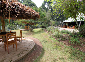 Bushara Island Camp, Lake Bunyonyi