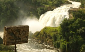 Murchison Falls National Park (also called Kabarega National Park) is one of the two main game parks in Uganda. It contains giraffes, which the other […]