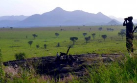 Getting out and exploring Uganda is one of the greatest things about living in this country. The chaos and bustle of Kampala quickly fades away […]